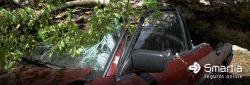 O seguro cobre danos causados por fenômenos da natureza?
